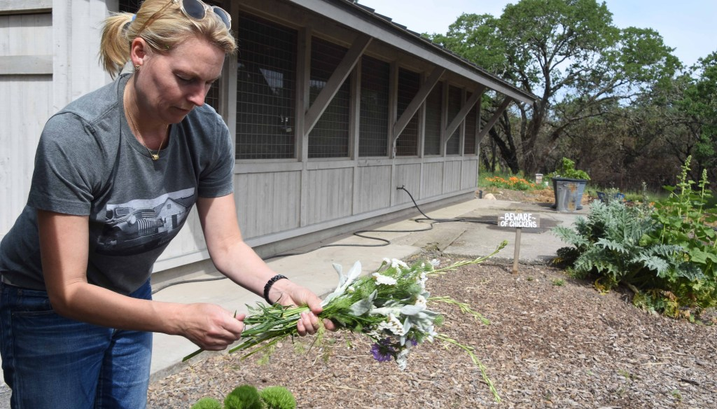 Flatbed Farm Bounces Back After Fires with Sofie Dolan putting together a bouquet of spring flowers