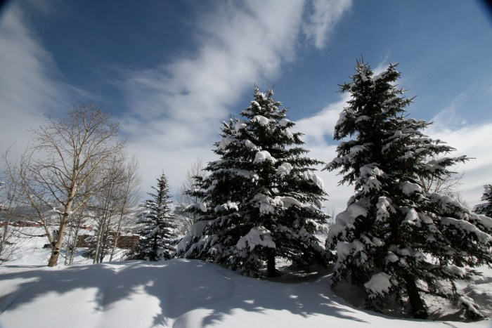 I miss snow and cold weather.