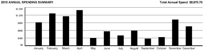 2015 Overall Spending per month