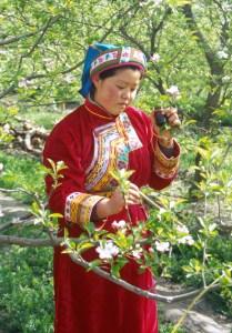 maoxian