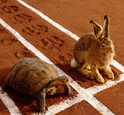 'The Tortoise and The Hare' in the Classroom.