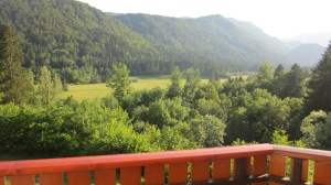 """View from """"our"""" porch"""