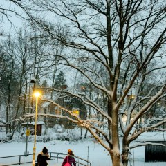 Photos: Winter scenes from Stockholm