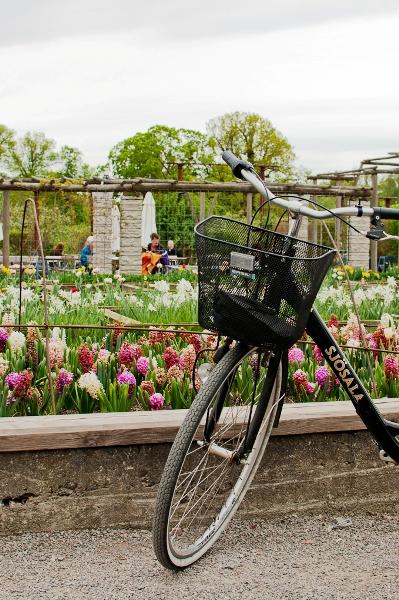 Rosendals Trädgård by Lola A. Åkerström