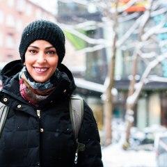 Understanding Sweden's diversity