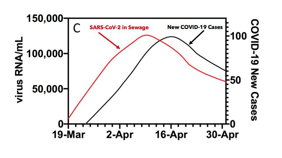 SARS-CoV-2 RNA concentrations in primary municipal sewage sludge as a leading indicator of COVID-19 outbreak dynamics (https://www.medrxiv.org/content/10.1101/2020.05.19.20105999v1.full.pdf)