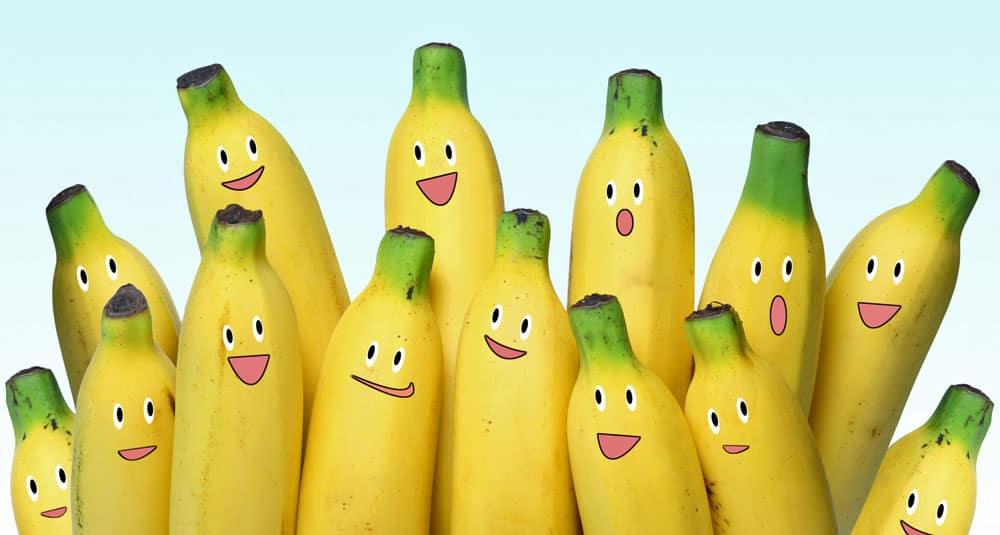 Potęga bananów