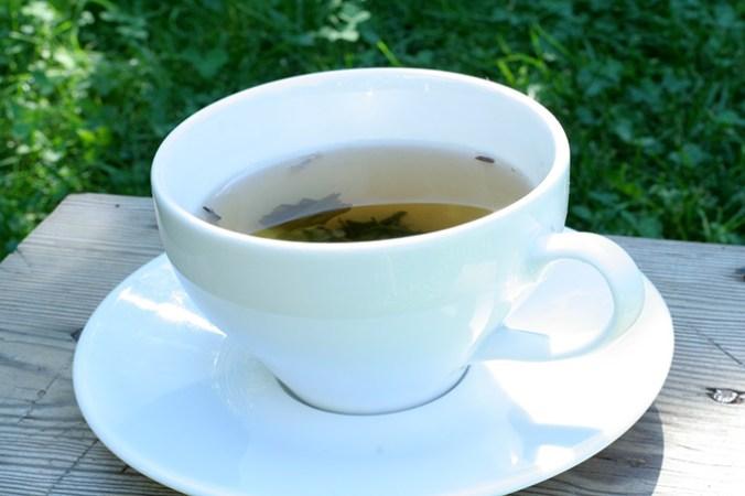 zielona herbata2