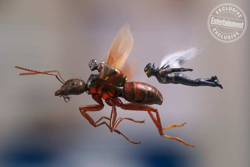Marvel Studios ANT-MAN AND THE WASP L to R: Ant-Man/Scott Lang (Paul Rudd) and The Wasp/Hope van Dyne (Evangeline Lilly)