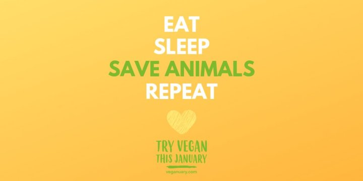 Veganuary. Are you taking the pledge?