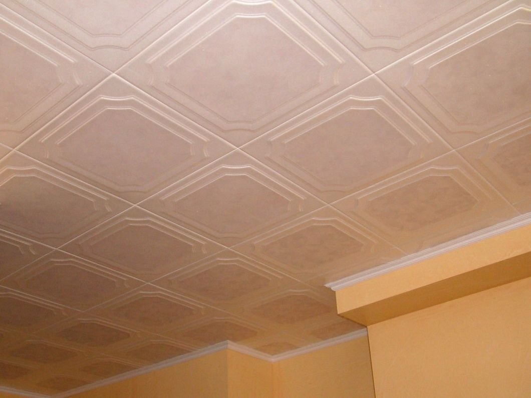 Polystyrene ceiling tiles south africa allaboutyouth polystyrene ceiling panels south africa hbm blog dailygadgetfo Image collections