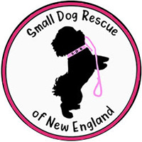 Small Dog Rescue of New England