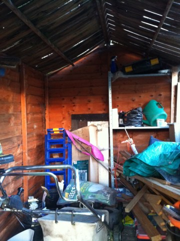 The old shed - rotten roof, dumping ground and mouse haven