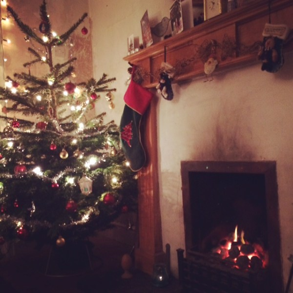 Christmas at the Smallest Smallholding