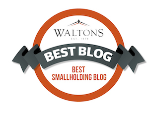 Waltons Blog Best Smallholding Blog Award