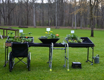 """Wheelchair and walker by garden at table height that holds three container garden """"beds""""."""