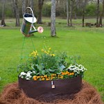 Container garden with flowers, and watering can that appears to be pouring water into the bed.