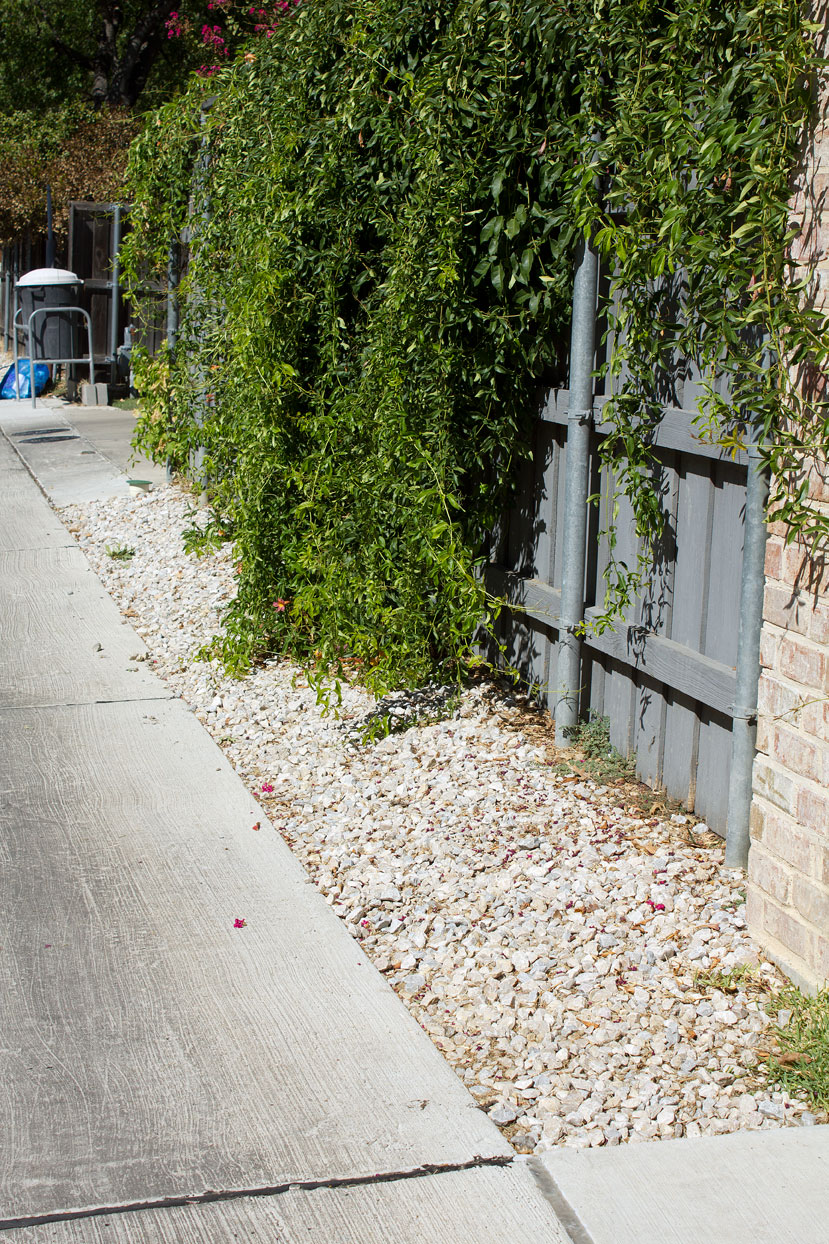 (above) This neighboring alley was rebuilt two years ago using aggregate as the filler in the easement.
