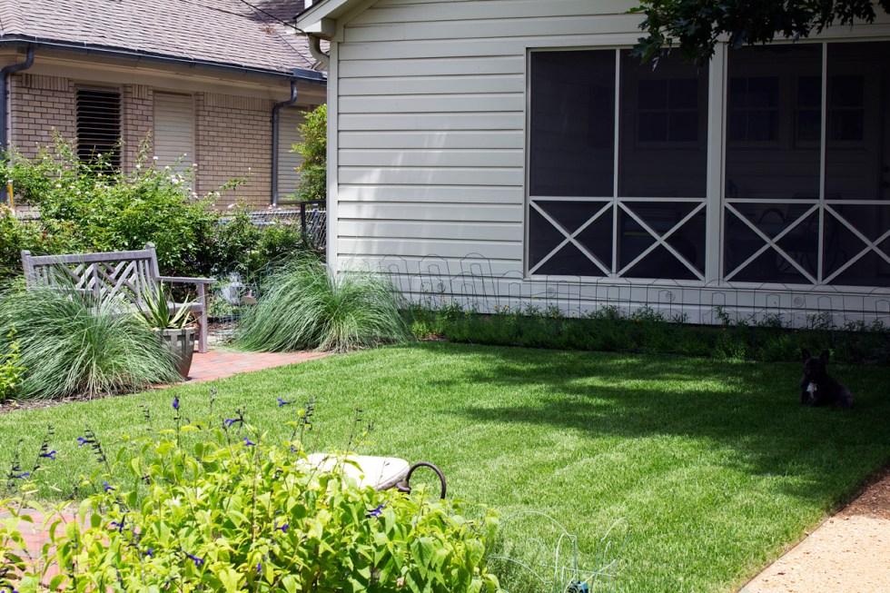 backyard_3744