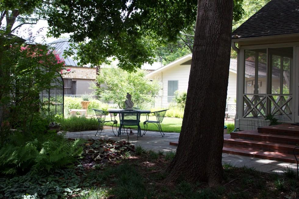 backyard_3776
