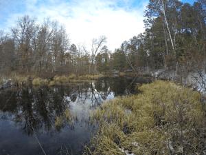 Creek from Burlington Lake in Burnett County, Wisconsin