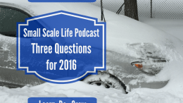 Three Questions for 2016; Snow Apocalypse 2016; goals; gardening