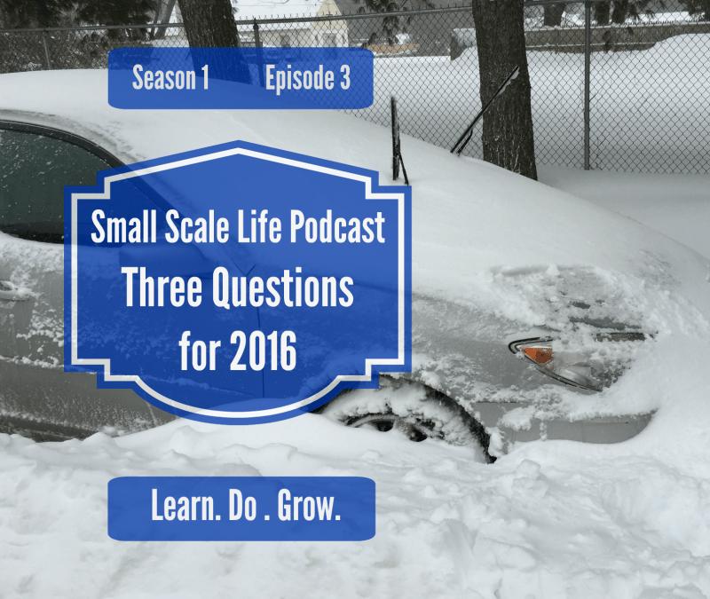 Three Questions for 2016; Snow Apocalypse 2016; goals; gardening