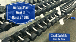 Work Out Gym Weight Room Pool Planning