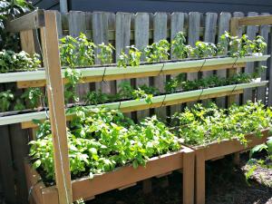 How to Build a Vertical Garden Planter; Garden; Soil; Soil Mix; Compost; Vermiculite; Peat Moss; Organic; Raised Beds; Planters; Garden; Gutters; Zip Ties; Basil; Parsley, vertical garden planters