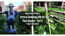 Tomatoes; Beans; Cucumbers; Peppers; Herbs; Greens; Lettuce; Vertical Garden; Trellis; Garden; Rain Gutter System; The Plant Charmer; Podcast; Small Scale Life Podcast; Learn Do Grow
