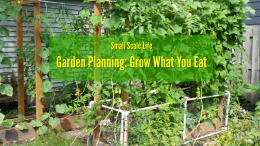 Gardening; Gardening Resources; Raised Beds; Vertical Gardening; Tomatoes; Herbs; Potatoes; Beans; Onions; Peas; Hybrid Rain Gutter Grow System; peppers; hydroponics; Larry Hall; Grow Bag Garden System; dill; herbs; jalapenos; wicking beds; Garden Planning; Grow What You Eat