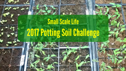 Potting Soil Challenge; Seedlings; Seeds; Indoor Garden