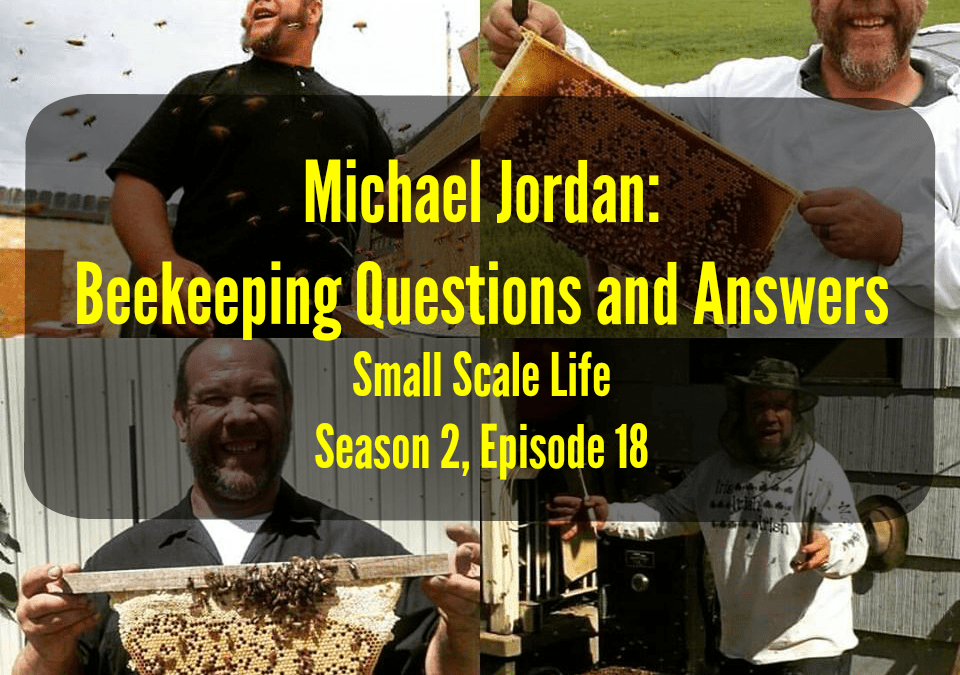 Bee; Bees; Honey; Pollen; Podcast; Small Scale Life; Homestead; Homesteading; Permaculture; Prepping; beekeeping; small business; mead; Michael Jordan; Beekeeping Questions and Answers