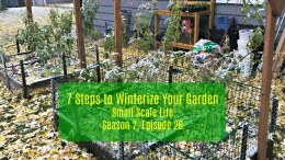 Square Foot Gardening; Garden; Minimalism; Urban Gardening; Podcast; Brand; Peppers; Facebook; trellis; tomatoes; cucumbers; melons; seedlings; pests and blight; winterize your garden; winterize