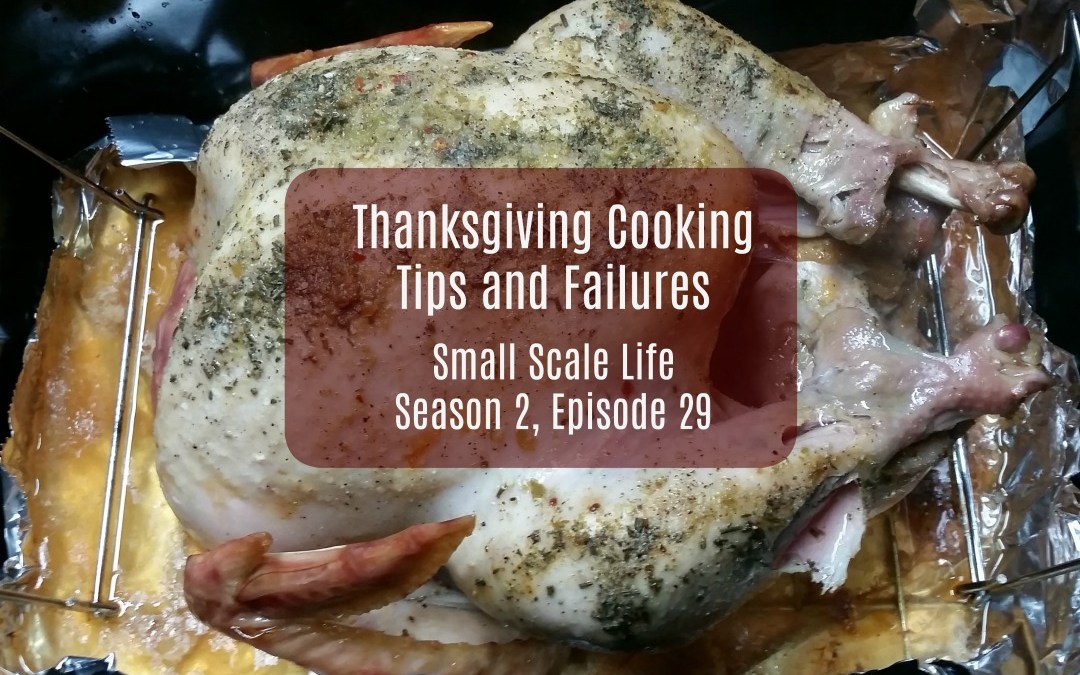 Thanksgiving Cooking Tips and Failures; Turkey; Recipes; Podcast