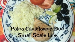 recipes, foodie, dinner, paleo, gluten free, entree, entree recipe, cauliflower rice, rice