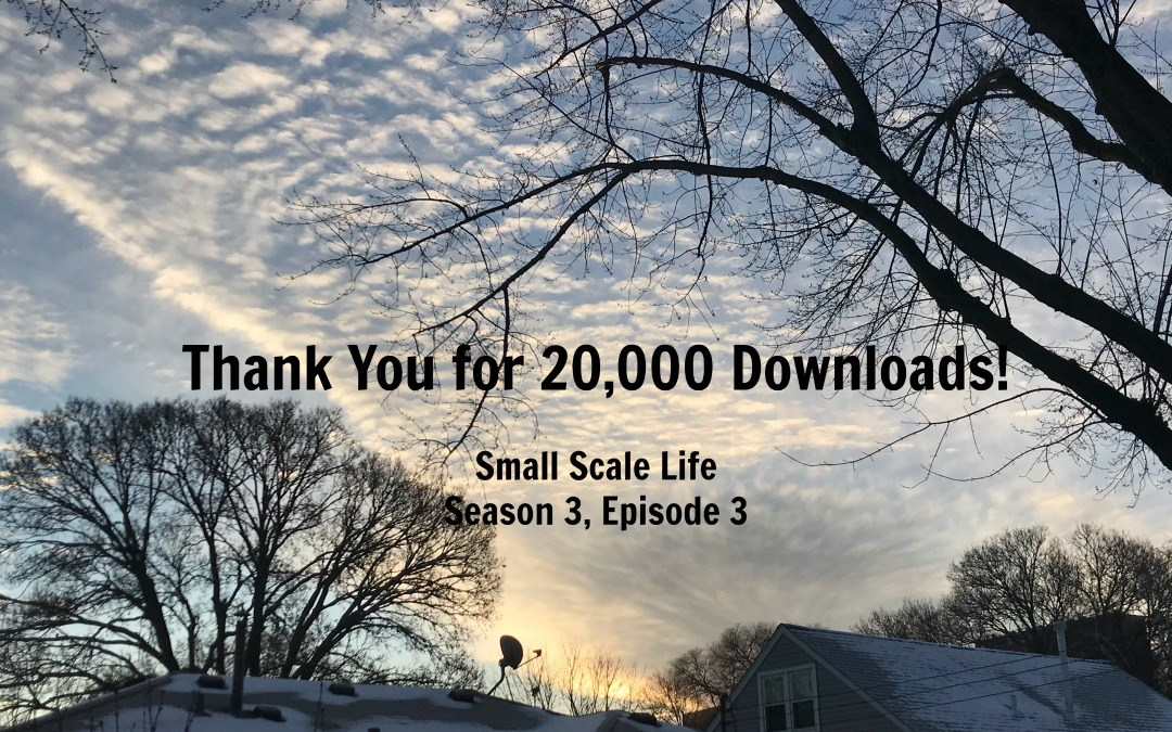 Small Scale Life, Small Scale Life Podcast, team, family, tribe, blogging, urban farming, blogging, preparedness, brewing, gardening, food preservation, healthy lifestyle, about