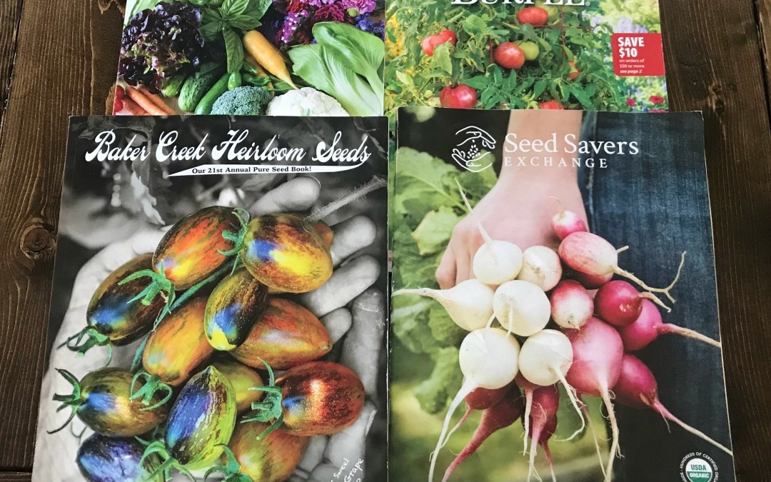 Square Foot Gardening, Garden, Urban Gardening, Seeds, Seedlings, Wicking Beds, Raised Beds, Trellis, Vertical Gardening, Rain Gutter Grow Systems, Soils, Compost, Grow What You Eat, Homestead, Reviewing Top Seed Sources for Your Garden