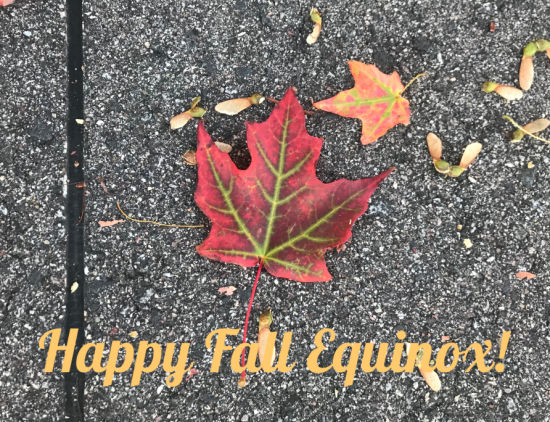 Happy Fall Equinox 2019; Celebrating the Harvest and Ancestors - Fall Equinox 2019