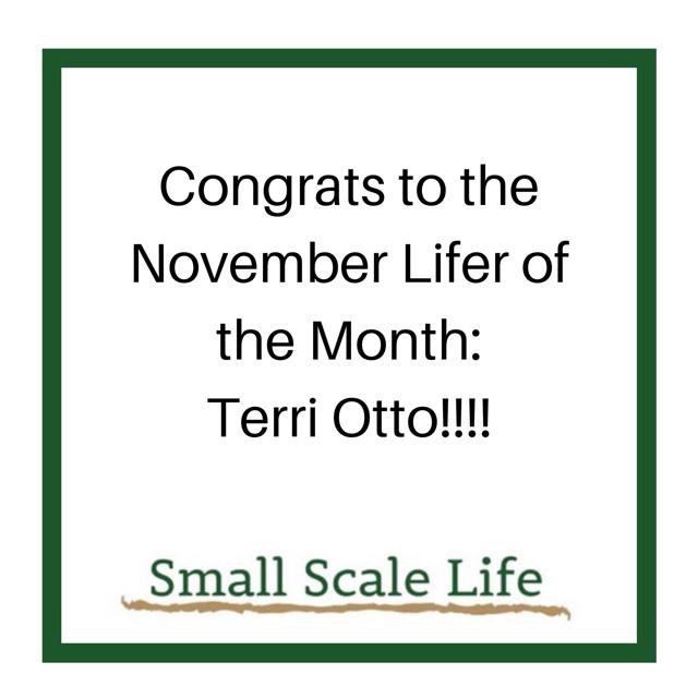 November 2019 Member of the Month - Terri Otto