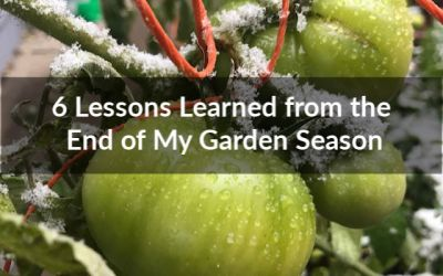 6 Lessons Learned from the End of My Garden Season
