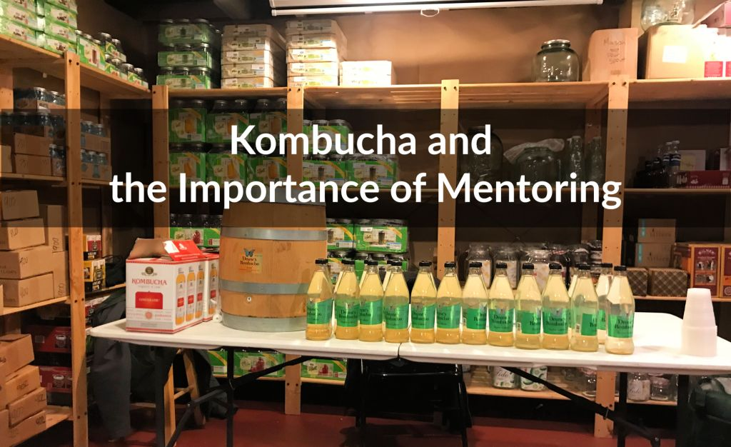 Kombucha and the Importance of Mentoring
