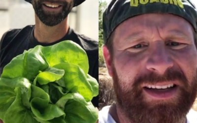 Gardening Tips and Advice with Demler and Bell