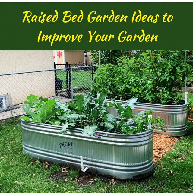 Raised Bed Garden Ideas to Improve Your Garden