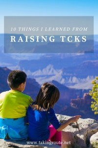 10-things-i-learned-from-raising-tcks-takingroute-net_