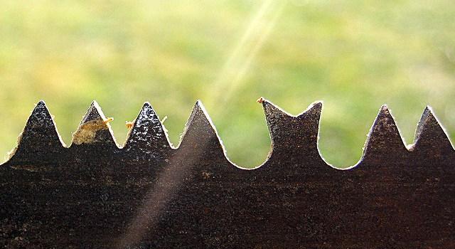 Website redevelopment – sharpen your saw