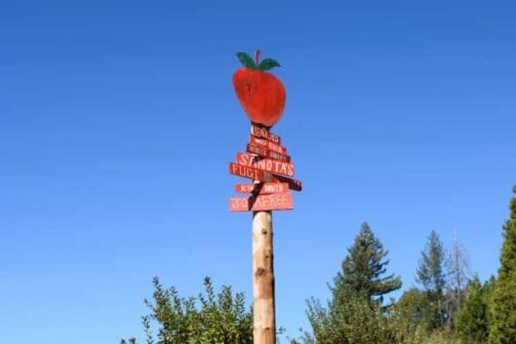 apple hill farms