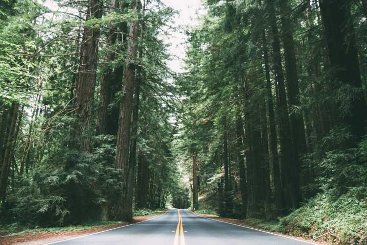 california road trip itinerary 10 days
