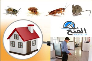 نصائح لجعل المنزل خالي من الحشرات
