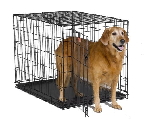 Dog Kennel | The Smart Dog Guide